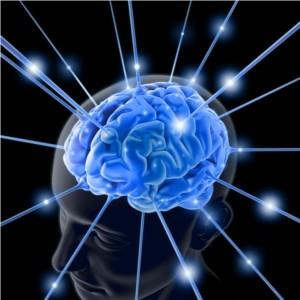 brain image 300x300 世の中の高所得者は頭がおかしいと思え!!普通の人間ではない